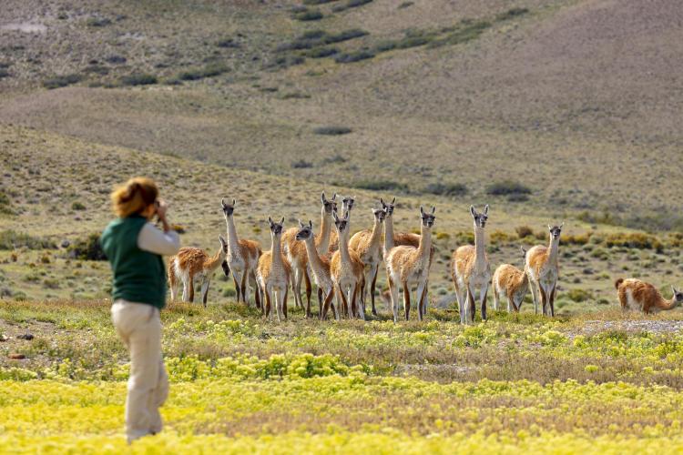 Parque Patagonia Florian von der Fecht 2020 _M4A3611 (1)