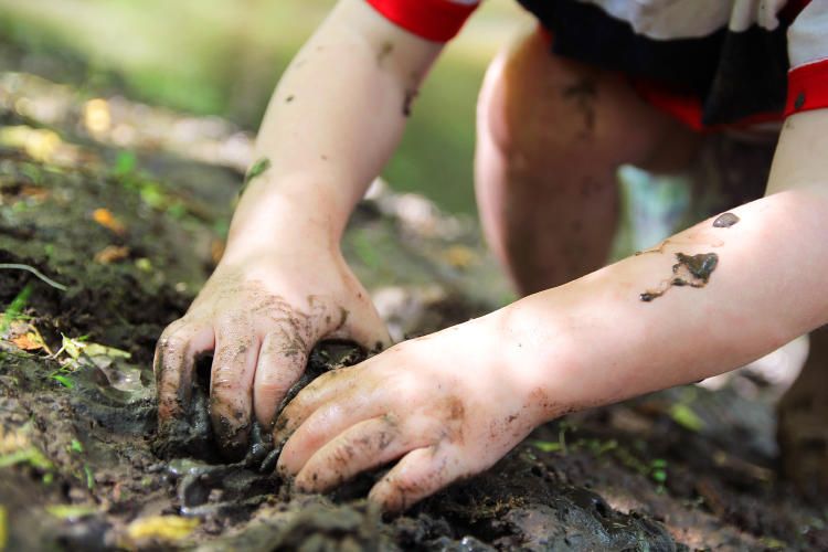 Niño con las manos en la tierra