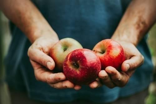 12 alimentos que no hace falta que compres orgánicos