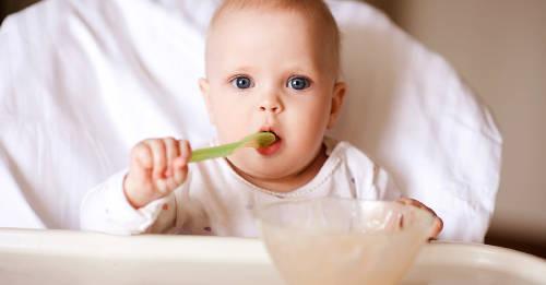 ¿Pueden los bebés tener una dieta libre de productos de origen animal?