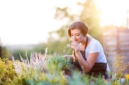 Cuáles son los beneficios de dedicarte a la jardinería para tu salud