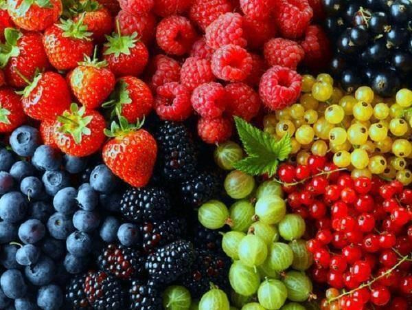 Alimentos para conservarnos jóvenes