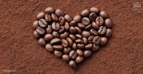 Café ¿Sí o no? ventajas, desventajas y cantidades adecuadas