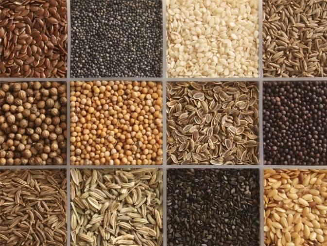 ¿Cómo y por qué se activan las semillas?