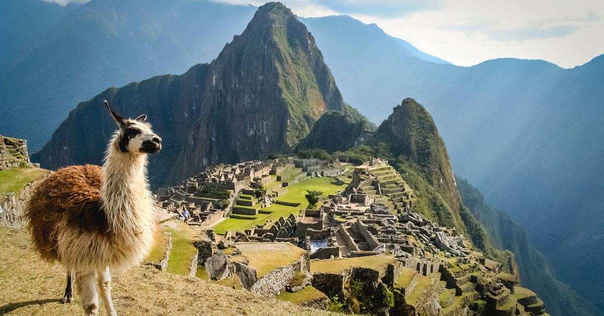 Machu Picchu: restringen el acceso de turistas para evitar su deterioro