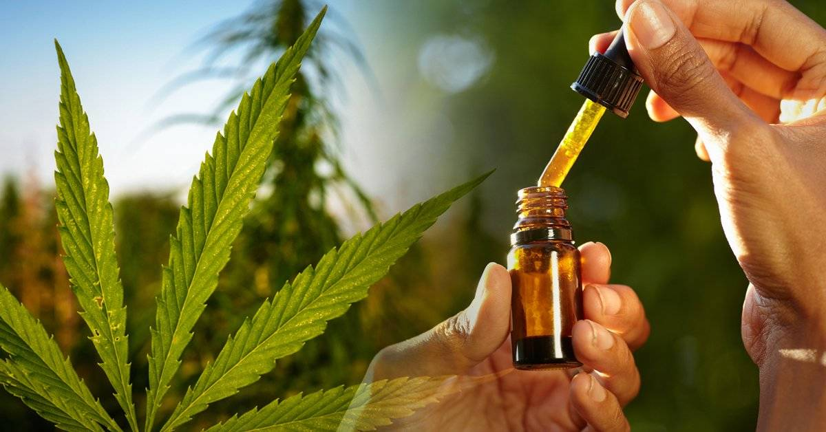 Estos productos con cannabis se venden en México de forma legal