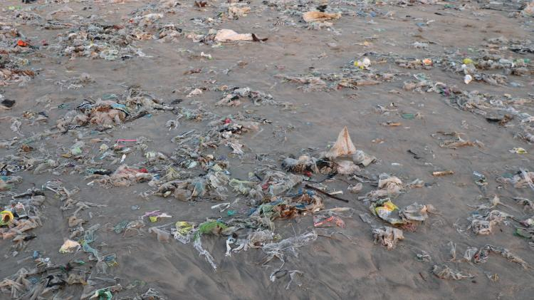 closeup-of-bea-ch-shore-washed-up-with-garbage