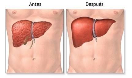 Cómo realizar paso a paso una desintoxicación completa del cuerpo en 7 días