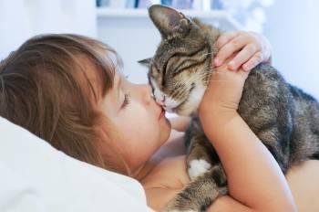 niño besando gato en cama