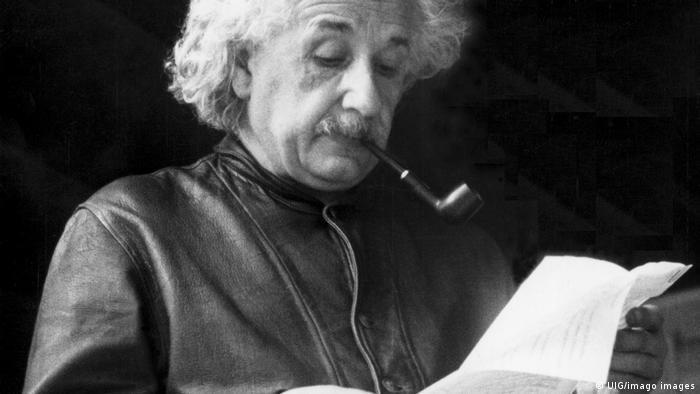 Una carta perdida revela que Einstein predijo los super sentidos de los animales