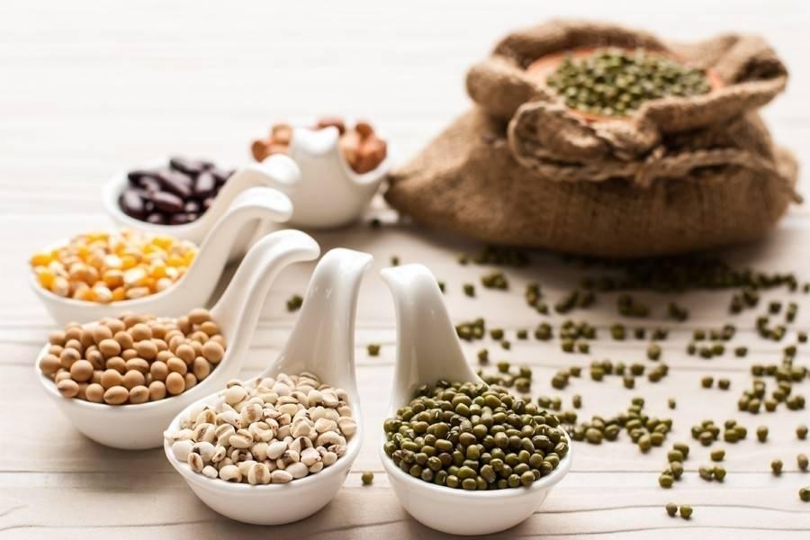 ¿Qué son las legumbres y por qué son importantes para tu nutrición?