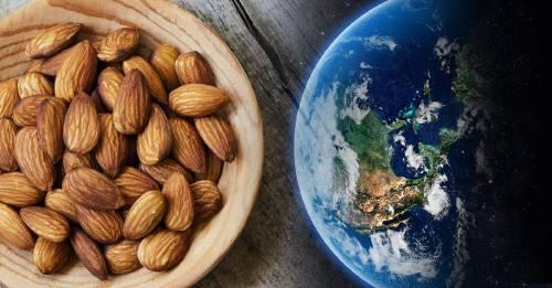 Los 5 alimentos que más contaminan y están destruyendo al planeta