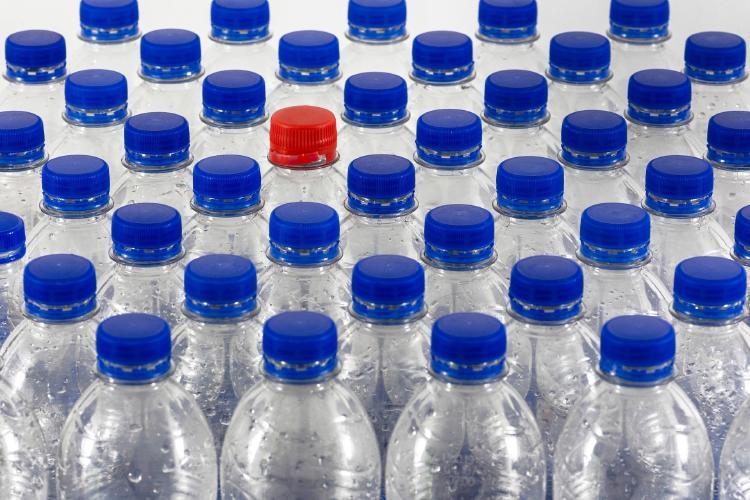 Reciclaje de plástico: proceso, plantas y manualidades
