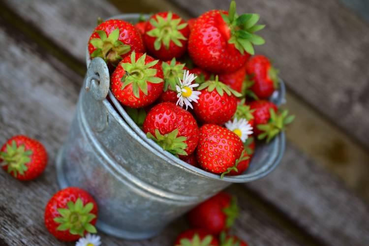 Un balde lleno de fresas