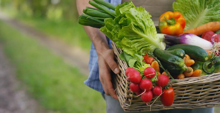 canasto de frutas y verduras para una alimentacion saludable