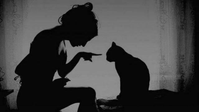 """¿De dónde viene la \""""mala suerte\"""" de los gatos negros?"""