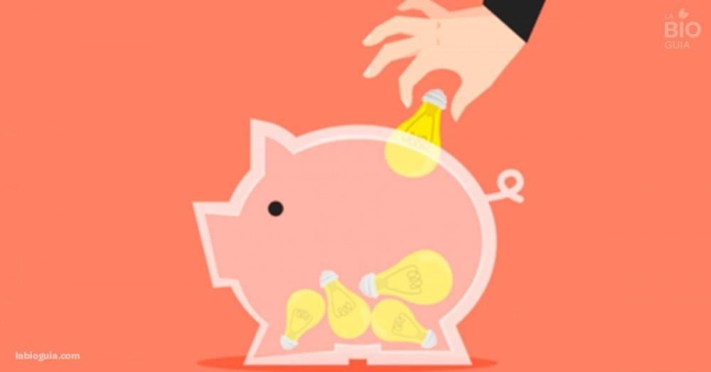 Guía útil para ahorrar energía, achicar las facturas y cuidar el ambiente