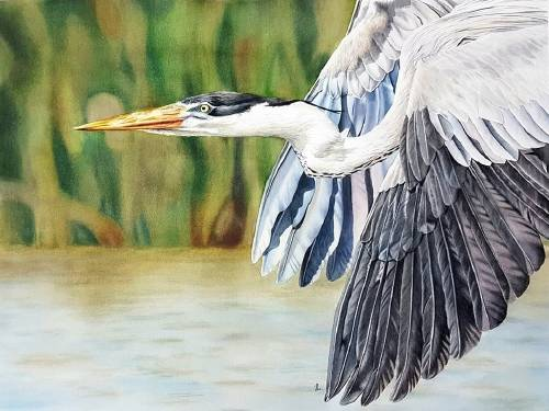 Una artista que pinta el mundo con un mensaje de amor a la naturaleza