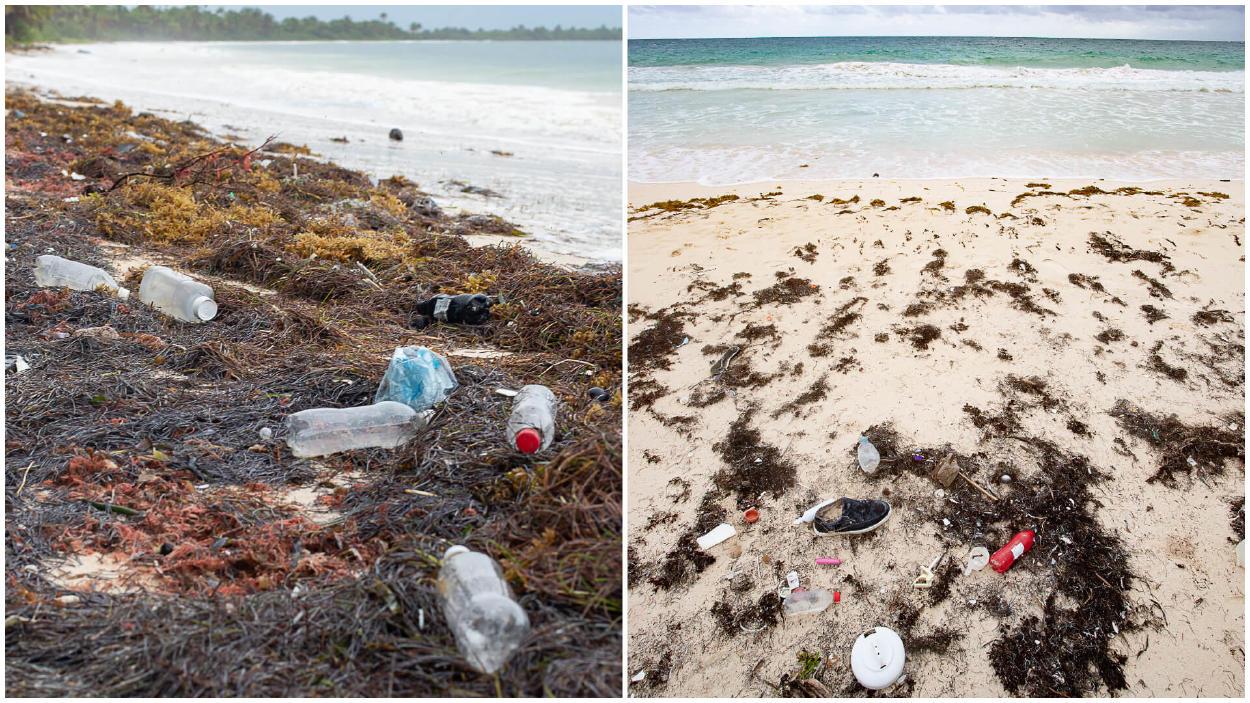 La contaminación plástica llega a Áreas Naturales Protegidas mexicanas