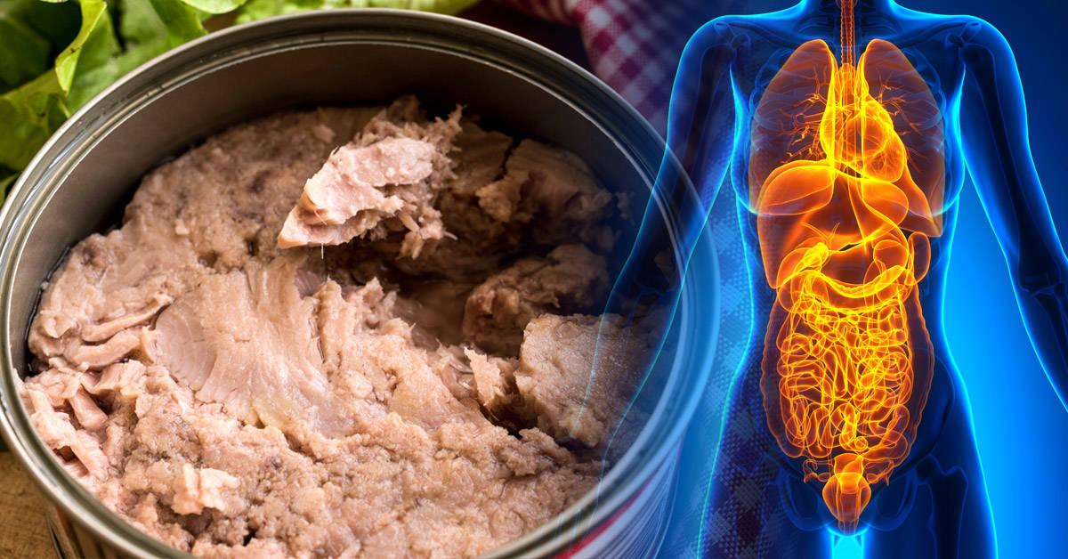 ¿Es posible que tu cuerpo esté contaminado con mercurio por comer pescado?