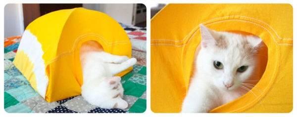 Cómo hacer una carpa para tu gato con una camiseta vieja
