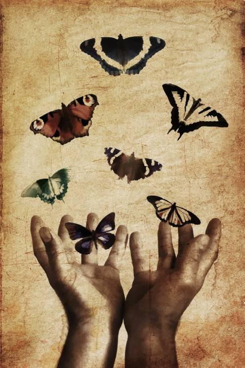 manos-mariposas