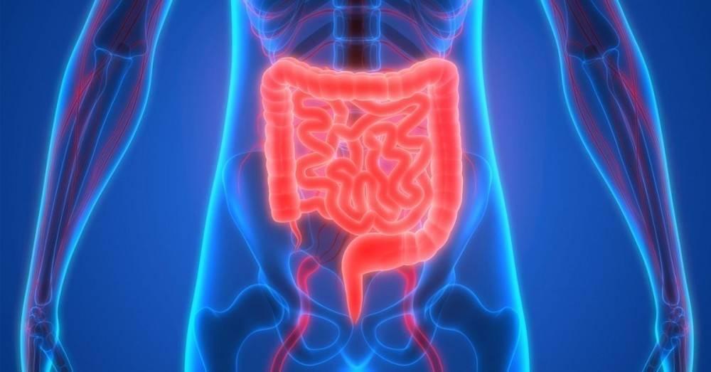 8 señales que indican una posible apendicitis y que no se deben ignorar