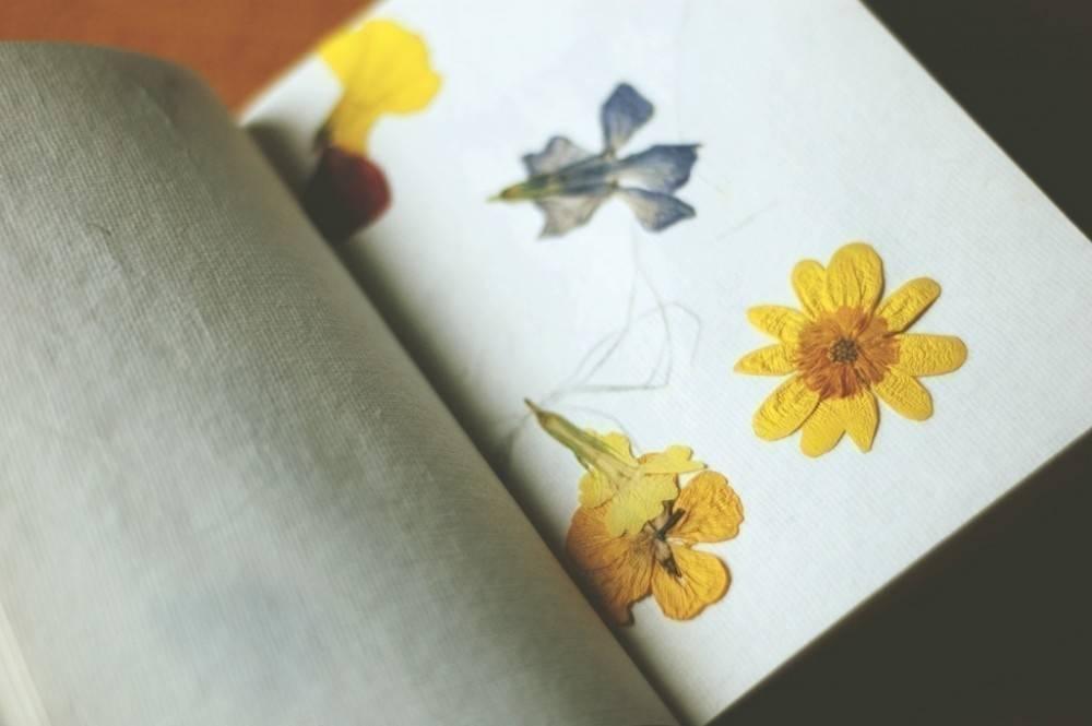 Ideas para decorar tu casa con flores secas