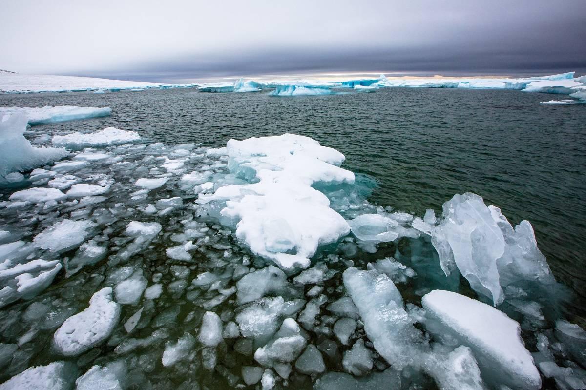 Calentamiento global: conoce las causas y consecuencias de este fenómeno