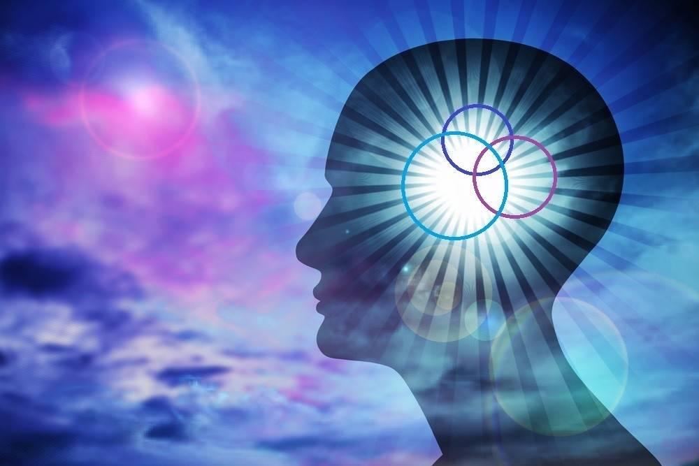 Cuando las emociones tienen más razón que nuestro cerebro: 3 instintos que c..