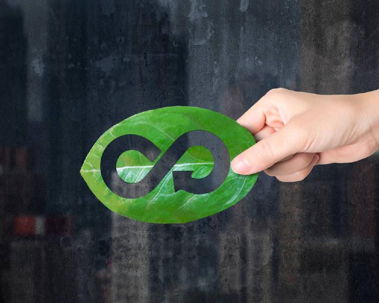 Bonos verdes: qué son y cuál es su importancia