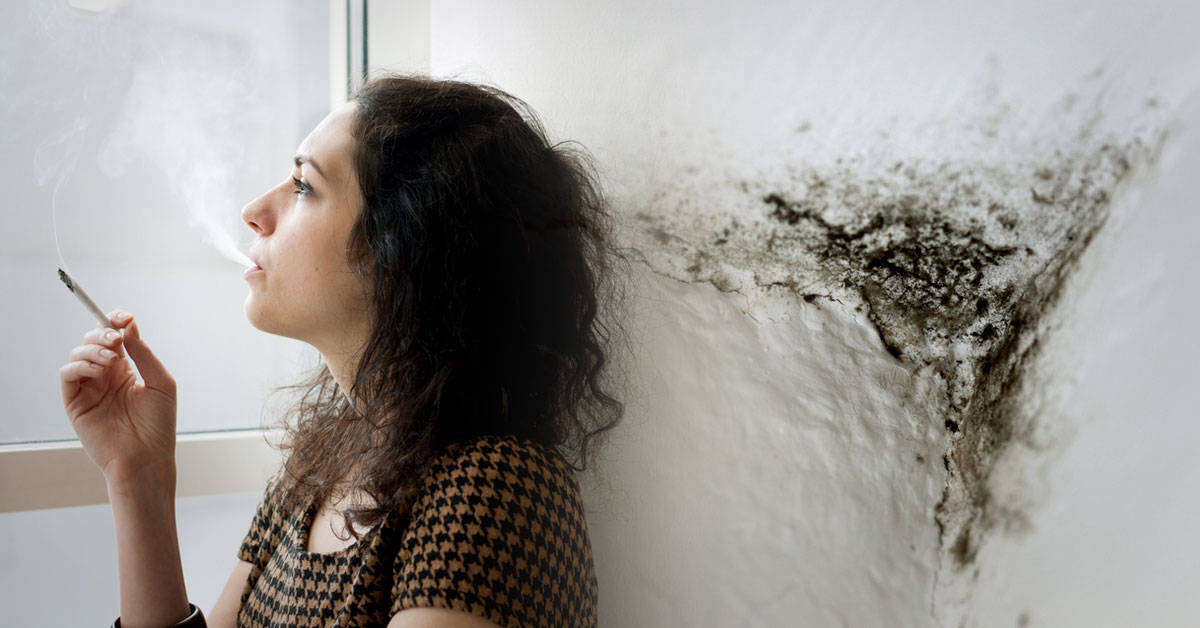 Contaminación puertas adentro: ¿qué tan limpio es el aire de tu hogar?