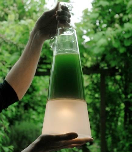 Latro. Lámpara de Algas que produce electricad por la fotosíntesis.