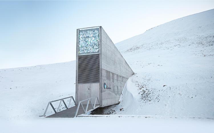 Banco de Semillas Svalbard