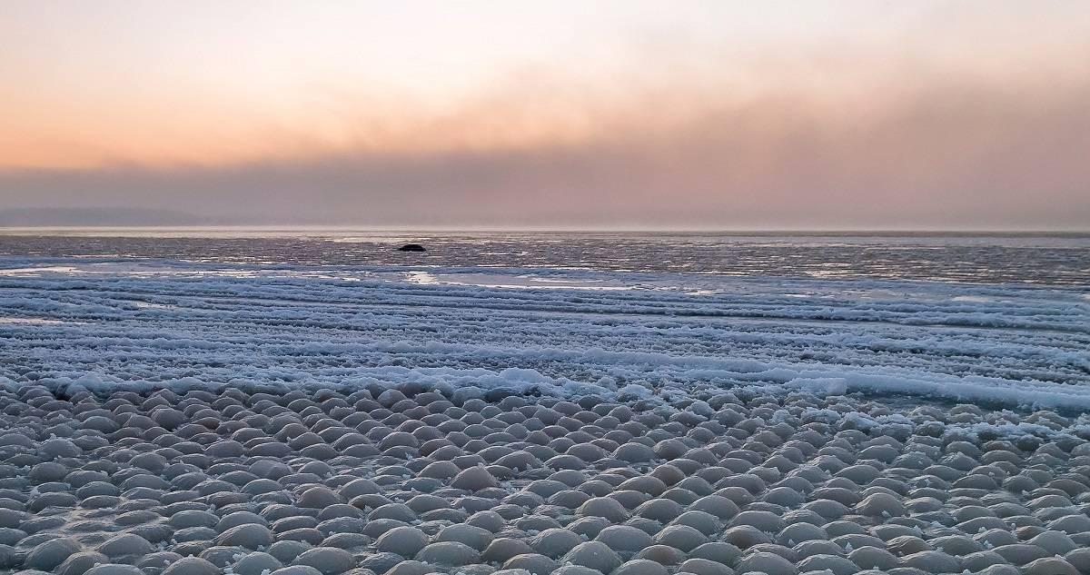 Qué son los huevos de hielo que aparecieron en una playa en Finlandia