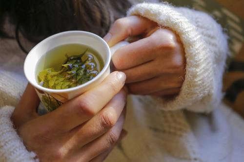 Hierbas para problemas respiratorios: ¿cuáles son los mejores remedios caseros?