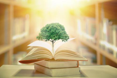 Enseñar es acompañar al otro en el descubrimiento de la propia naturaleza