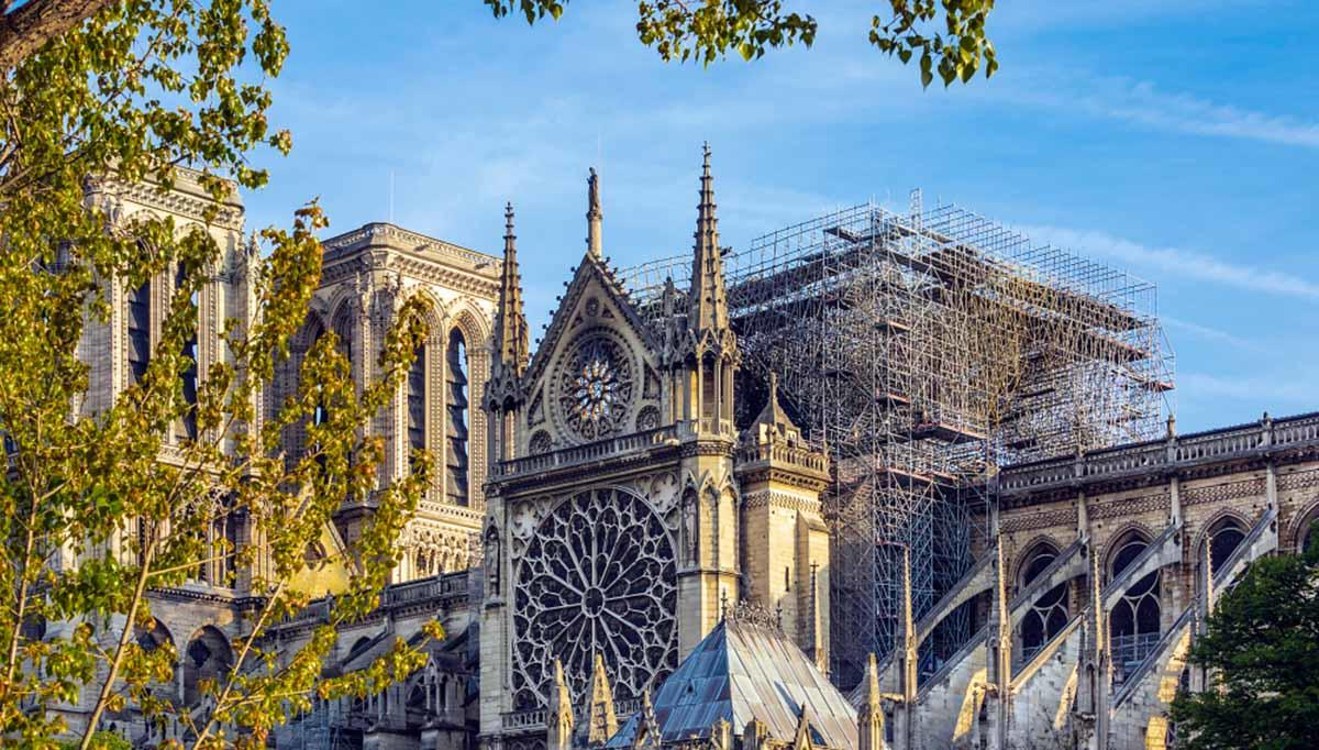 Francia tala 2000 árboles antiguos para reconstruir Notre Dame