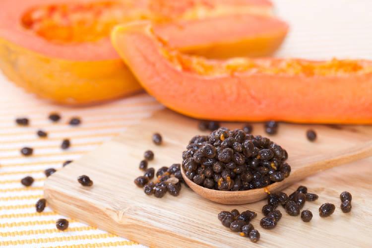 semillas papaya