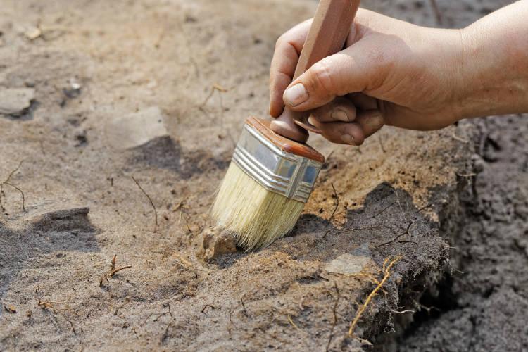 Un arqueólogo trabajando con un pincel