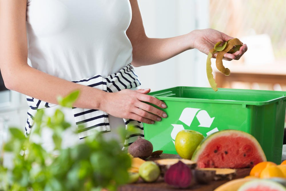 #HogaresConscientes: ¿Cómo cuidar el ambiente desde casa?
