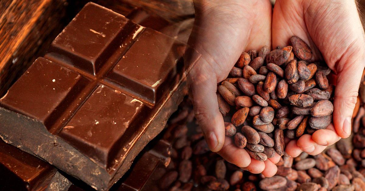 Por qué los científicos predicen que el chocolate desaparecerá pronto