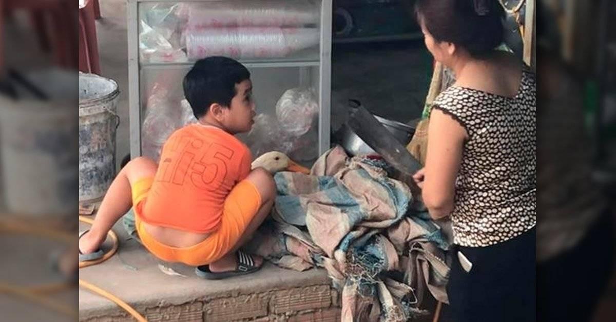 VIDEO: Su madre quería matar al pato para la cena, pero él hizo esto