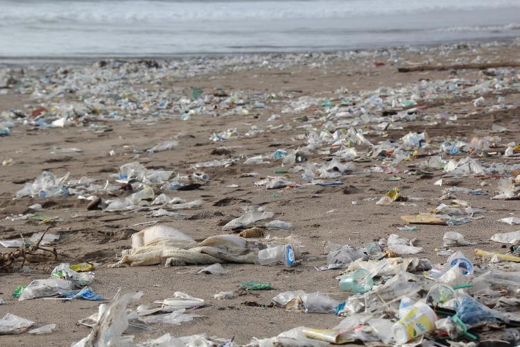 basura-en-la-playa