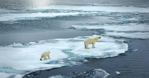 4 mitos sobre el cambio climático refutados por los científicos
