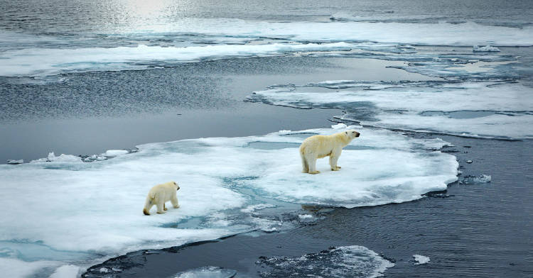 mitos-cambio-climatico