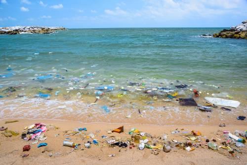 Plástico: el residuo que más aparece en las playas