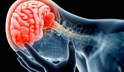 La escalofriantes conclusiones que reveló el estudio del cerebro de un ex jug..