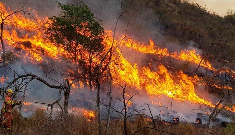 incendios-argentina