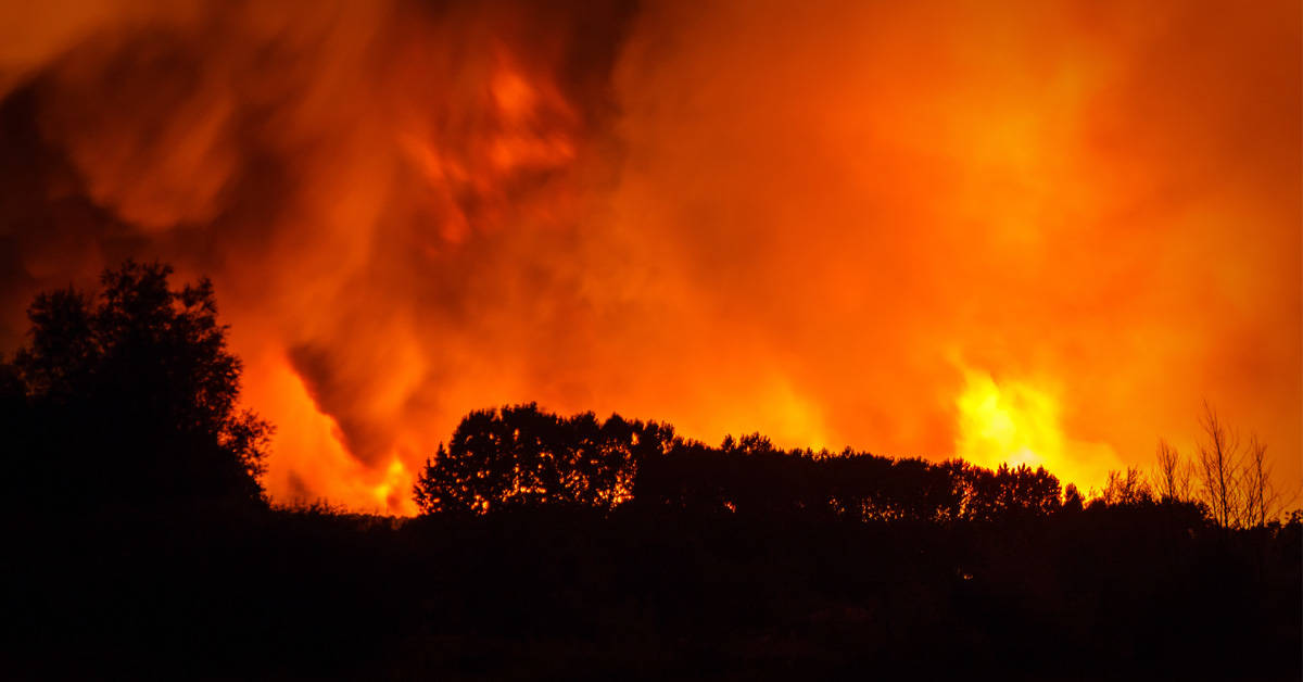 Los incendios de Indonesia tiñen el cielo de rojo